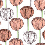 Teste padrão sem emenda do Tulip Fundo da flor do vetor Imagens de Stock Royalty Free