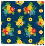 Teste padrão sem emenda do verão com hibiscus e frutos Imagem de Stock Royalty Free