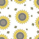Teste padrão sem emenda do verão floral dos girassóis ilustração royalty free