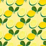 Teste padrão sem emenda do verão mínimo na moda com o limão inteiro, cortado do fruto fresco no fundo da cor Fotos de Stock