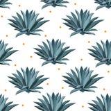 Teste padrão sem emenda do vetor azul da agave Fundo para blocos do tequila, superfood com syrop da agave, e outro succulent Foto de Stock