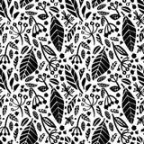 Teste padrão sem emenda do vetor com as ervas de tiragem da tinta, flores, ilustração botânica artística monocromática botanical ilustração stock