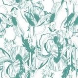 Teste padrão sem emenda do vetor com as flores desenhados à mão da tinta Foto de Stock
