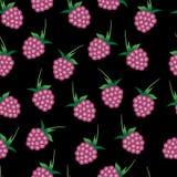 Teste padrão sem emenda do vetor com as framboesas cor-de-rosa brilhantes Imagem de Stock Royalty Free