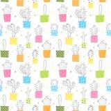 Teste padrão sem emenda do vetor com as plantas coloridas do cacto Imagens de Stock Royalty Free