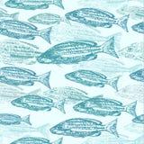 Teste padrão sem emenda do vetor com esboços dos peixes Fotografia de Stock Royalty Free