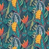 Teste padrão sem emenda do vetor com folhas de palmeira tropicais, plantas da selva, flores exóticas ilustração do vetor