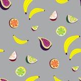 Teste padrão sem emenda do vetor com fruto tropico Fotos de Stock Royalty Free