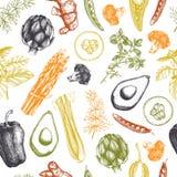 Teste padrão sem emenda do vetor com os vegetais e as especiarias tirados mão Esboço do alimento biológico Fundo das ervas do kit ilustração stock