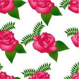 Teste padrão sem emenda do vetor com rosas cor-de-rosa ilustração royalty free