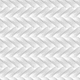 Teste padrão sem emenda do vetor com tranças A textura do fio com linha pontilhada entrança o close-up Fundo decorativo abstrato  Imagem de Stock Royalty Free