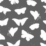 Teste padrão sem emenda do vetor das silhuetas brancas das borboletas no fundo cinzento ilustração stock