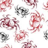 Teste padrão sem emenda do vetor do marisco Caranguejo Ícones gravados tirados mão Imagem de Stock Royalty Free