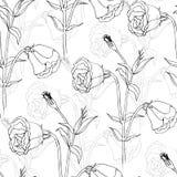 Teste padrão sem emenda do vetor floral Foto de Stock