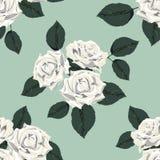 Teste padrão sem emenda do vintage clássico com rosas brancas Imagem de Stock