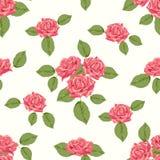 Teste padrão sem emenda do vintage com rosas Fotografia de Stock