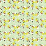 Teste padrão sem emenda do vintage floral colorido claro Foto de Stock Royalty Free