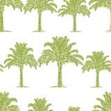 Teste padrão sem emenda dos esboços das palmeiras ilustração stock