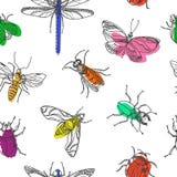 Teste padrão sem emenda dos insetos Ilustração da garatuja do vetor ilustração stock
