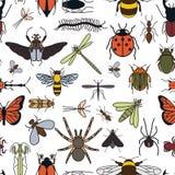 Teste padrão sem emenda dos insetos 24 partes no grupo Imagens de Stock Royalty Free