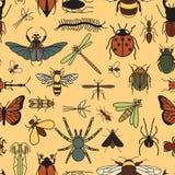 Teste padrão sem emenda dos insetos 24 partes no grupo Imagens de Stock
