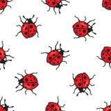Teste padrão sem emenda dos Ladybugs Vetor Imagem de Stock