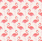 Teste padrão sem emenda dos pássaros do flamingo imagens de stock
