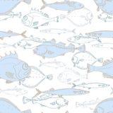 Teste padrão sem emenda dos peixes de mar brancos e azuis Vara, bacalhau, scomber, cavala, solha, saira garatuja do vetor Imagem de Stock