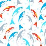 Teste padrão sem emenda dos peixes Fundo do vetor Imagens de Stock Royalty Free