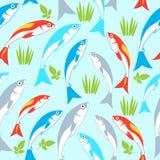 Teste padrão sem emenda dos peixes Fundo do vetor Imagens de Stock