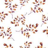 Teste padrão sem emenda dos ramos decorativos alaranjados e roxos Ilustração da aguarela ilustração royalty free