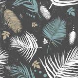 Teste padrão sem emenda em folha de palmeira Fotos de Stock