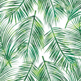 Teste padrão sem emenda em folha de palmeira Fotos de Stock Royalty Free