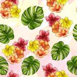 Teste padrão sem emenda - entregue a aquarela tirada flores tropicais no fundo do ombree Fotografia de Stock