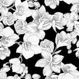 Teste padrão sem emenda Entregue o ramalhete tirado do esboço com orquídea e plumeria Ilustração altamente detalhada do vetor Bon fotos de stock