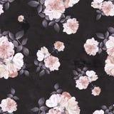 Teste padrão sem emenda escuro da aquarela da flor das rosas Imagens de Stock Royalty Free