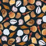 Teste padrão sem emenda escuro das conchas do mar Imagem de Stock Royalty Free