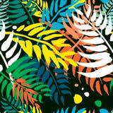 Teste padrão sem emenda exótico das folhas de palmeira do teste padrão ilustração stock