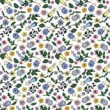 Teste padrão sem emenda feito de flores do contorno em rabiscar o estilo no fundo transparente ilustração royalty free