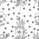 Teste padrão sem emenda Flor botânica da ilustração do vintage Fotos de Stock