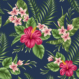 Teste padrão sem emenda floral Fotografia de Stock Royalty Free