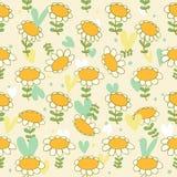 Teste padrão sem emenda floral Camomiles t delicado do bebê ilustração stock