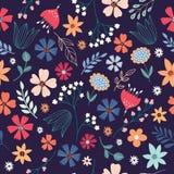 Teste padrão sem emenda floral com as flores e as plantas tiradas mão Fotos de Stock Royalty Free