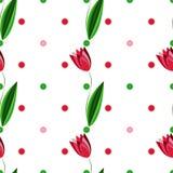 Teste padrão sem emenda floral com as tulipas no fundo branco com círculos coloridos Foto de Stock