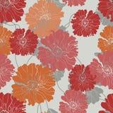 Teste padrão sem emenda floral com flores da papoila ilustração do vetor