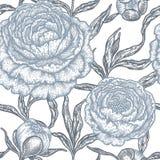 Teste padrão sem emenda floral com flores da peônia Foto de Stock