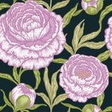 Teste padrão sem emenda floral com flores da peônia Fotografia de Stock