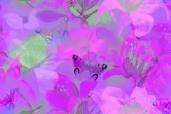 Teste padrão sem emenda floral com flores e borboleta do jardim foto de stock royalty free