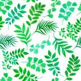 Teste padrão sem emenda floral com folhas verdes Fotos de Stock Royalty Free