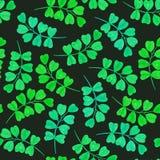 Teste padrão sem emenda floral com folhas verdes Fotografia de Stock Royalty Free